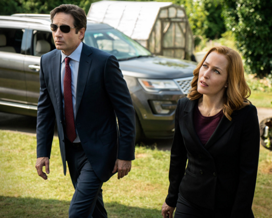 David Duchovny and Gillian Anderson in The X Files revival